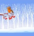 Cartoon funny robin bird on the berry tree vector image