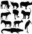 Set of African animals Black silhouette on white vector image