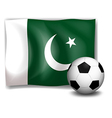 A soccer ball and the flag of Pakistan vector image