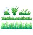 Grass Set vector image vector image