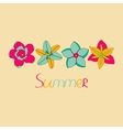 tropical flowers n color vector image