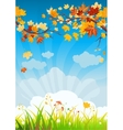 Autumn leaves and grass vector image