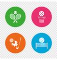 tennis rackets with ball basketball basket vector image