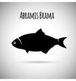 Abramis brama Bream fish logo icon vector image