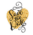 save the date text calligraphy on a background of vector image