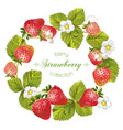 Strawberry round frame vector image