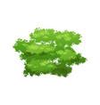 green bush icon vector image