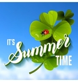 It is Summer Time Lettering Background With green vector image
