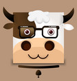 flat image of an ox face on gray background vector image