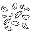 mint leaves doodle style sketch isolated vector image