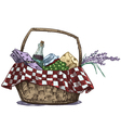 Picnic basket with snack vector image