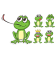Green frogs vector image