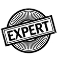 Expert rubber stamp vector image
