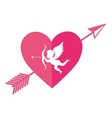 cupid angel love card vector image