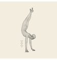 Gymnast Man 3D Model of Man Human Body Model vector image
