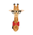 giraffe hipster animal wearing glasses fashion vector image