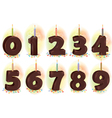 Chocolate numbers candles for holiday cake vector image
