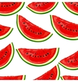 Seamless pattern watermelons vector image