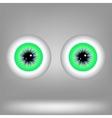 Green Eyes vector image