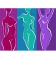 Slim woman body vector image
