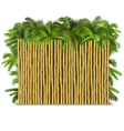 Bamboo Fence with Palm vector image