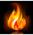 Fire bright flame on dark background vector image vector image