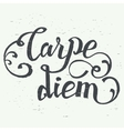 Carpe diem hand-lettering quote vector image vector image
