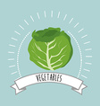 Healthy and natural food vector image