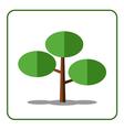 Pine fir tree icon vector image vector image