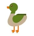 duck farm isolated icon design vector image