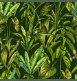 tropical leaves dense jungle seamless hand vector image