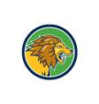 Angry Lion Head Roar Circle Cartoon vector image