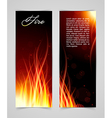 Fire glow background vector image