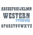 looking typeface shows curves on letters vector image