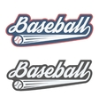 Vintage baseball label and badge vector image