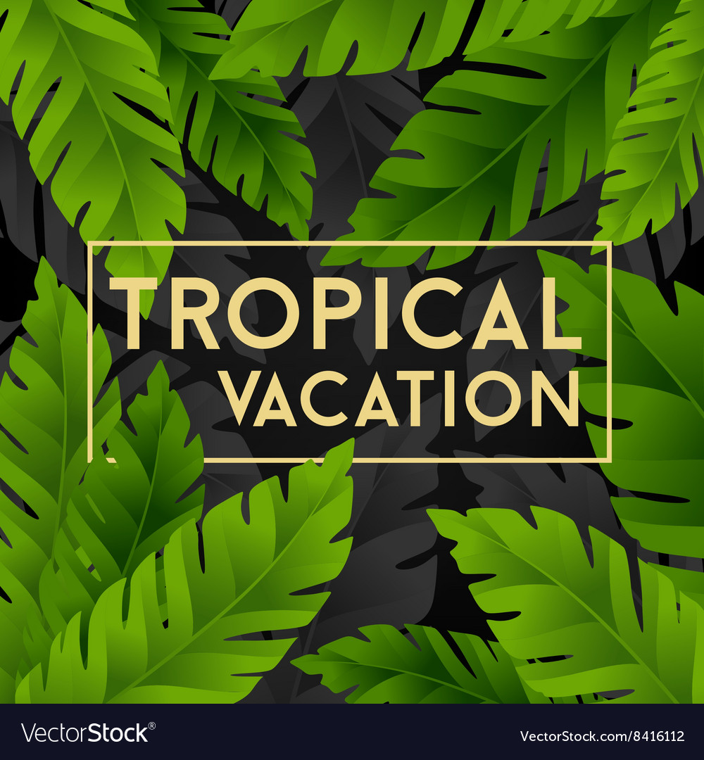 Tropical vacation card with banana palm leaves vector