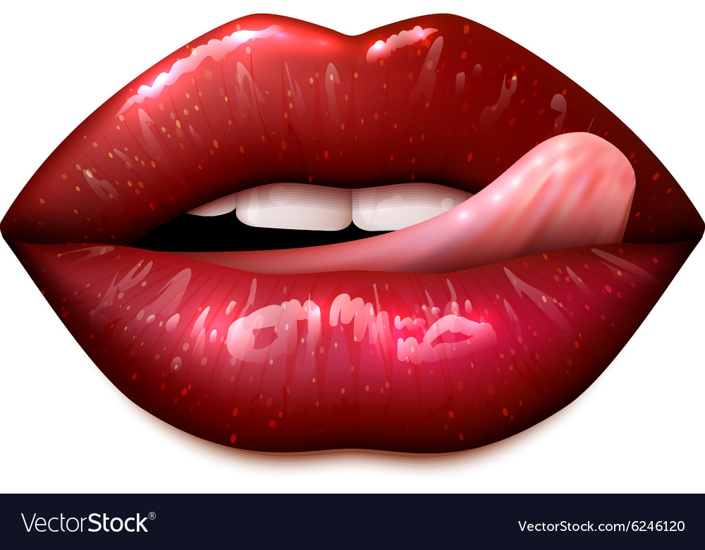 Female lips make up vector