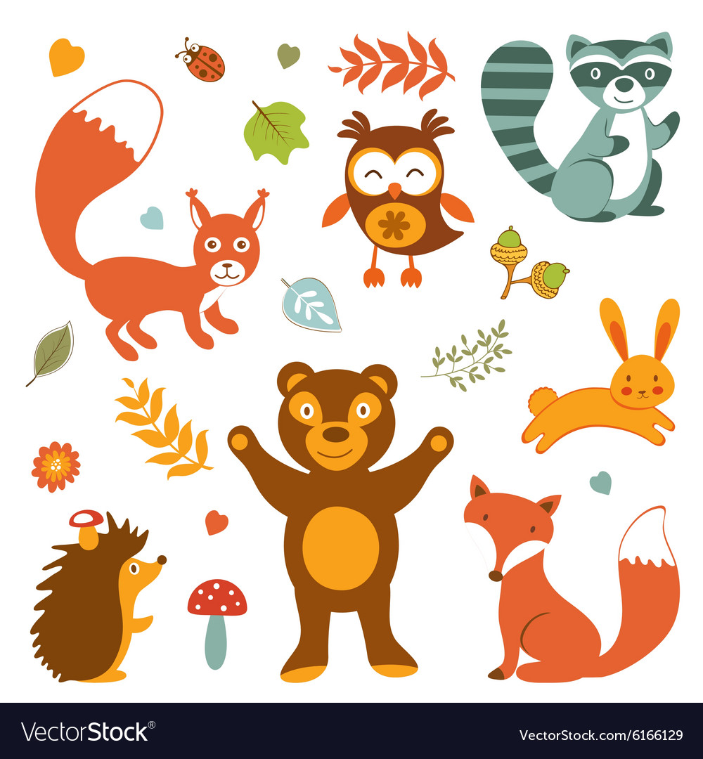 Cute forest animals colorful collection vector