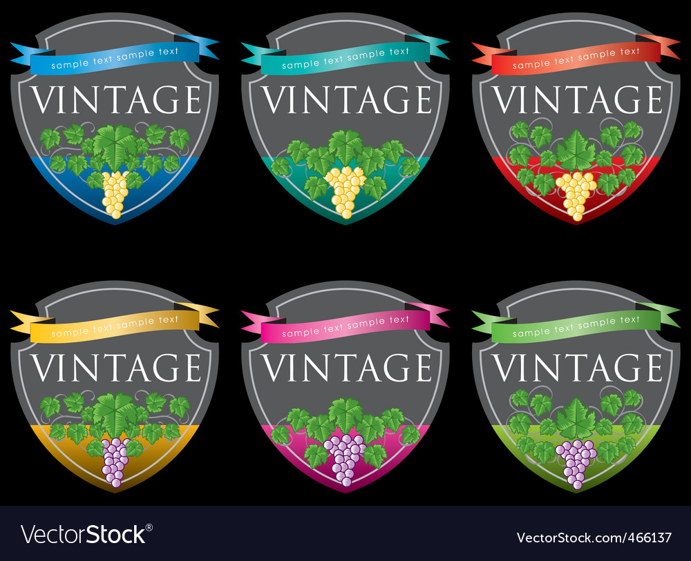 Wine labels31 vector