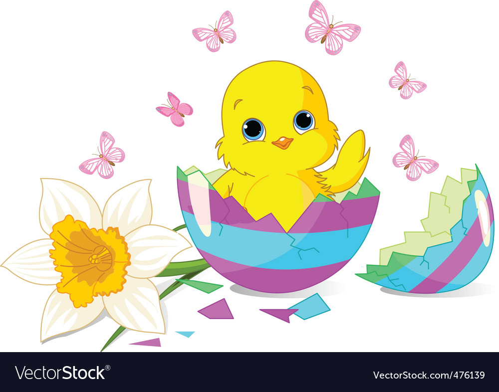 Easter chick surprise vector