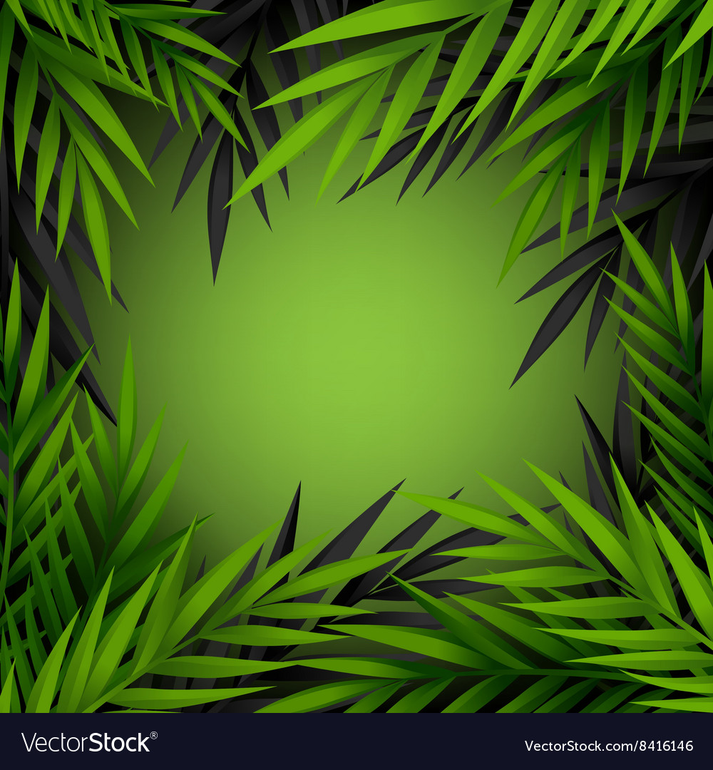 Green and dark jungle leaves frame vector
