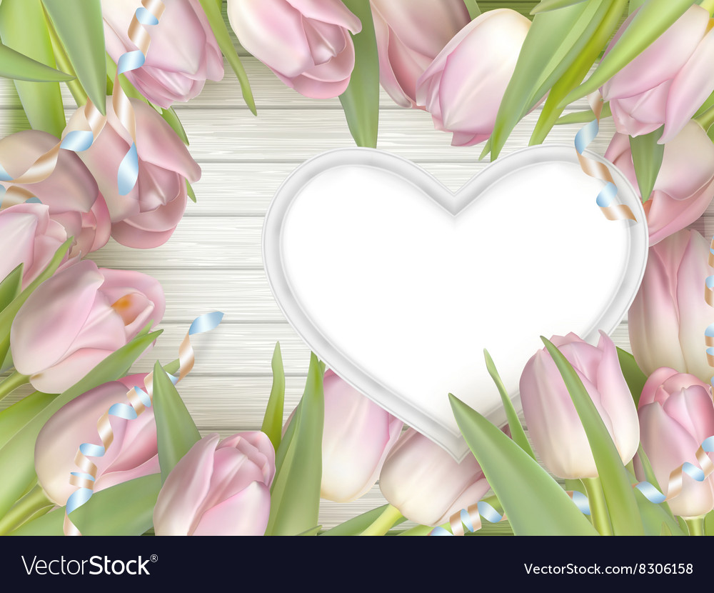 Pink tulips and heart frame eps 10 vector