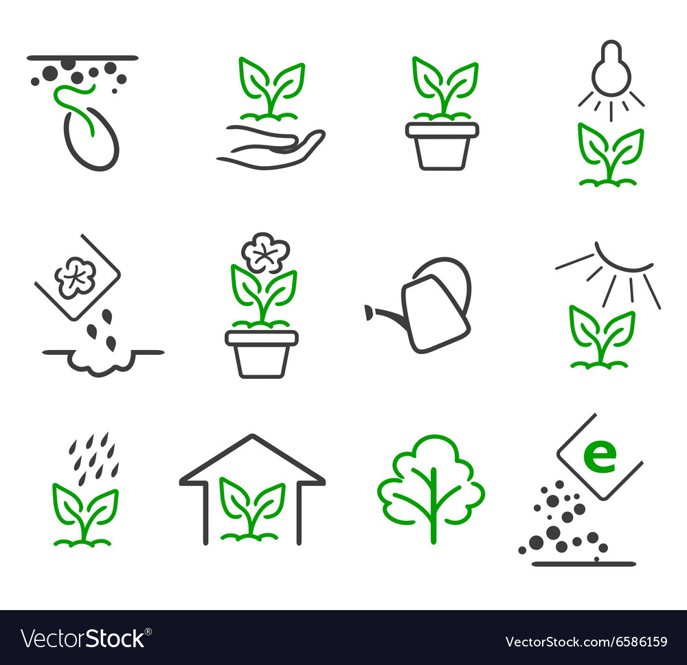 Line sprout and plant growing icons set vector