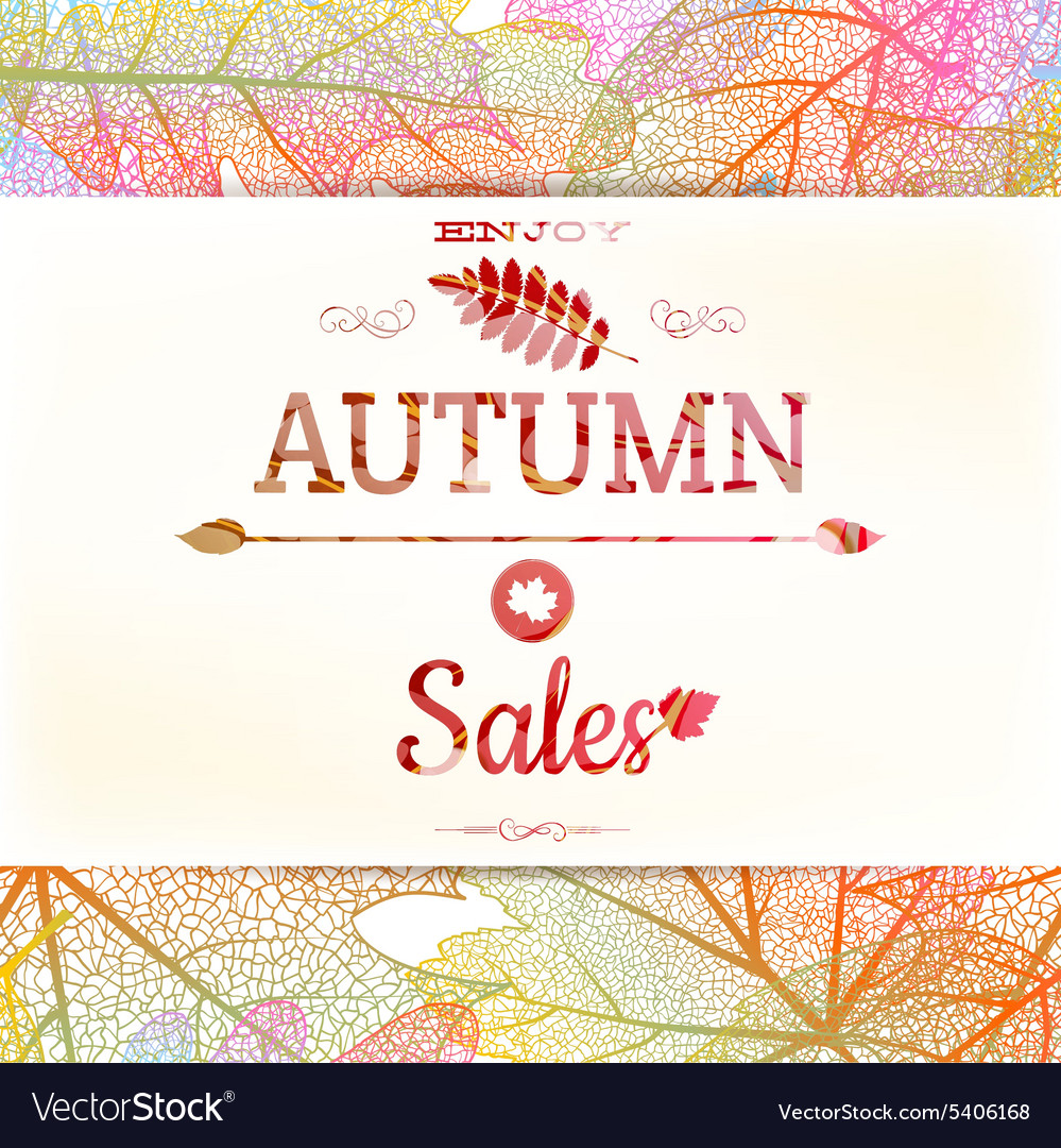 Big autumn sale eps 10 vector
