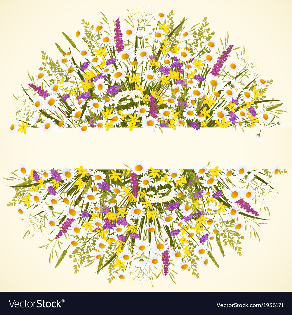 Circle with wild flowers vector
