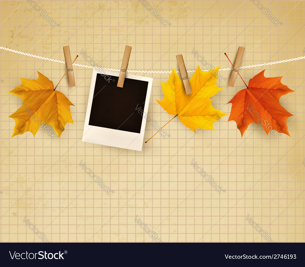 Autumn background with colorful leaves on rope vector