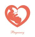 Fetus icon vector image