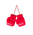 boxing gloves hanging on rope vector image