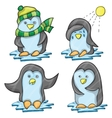 Penguin in Several Poses vector image