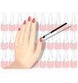 nail polish a nd hand vector image